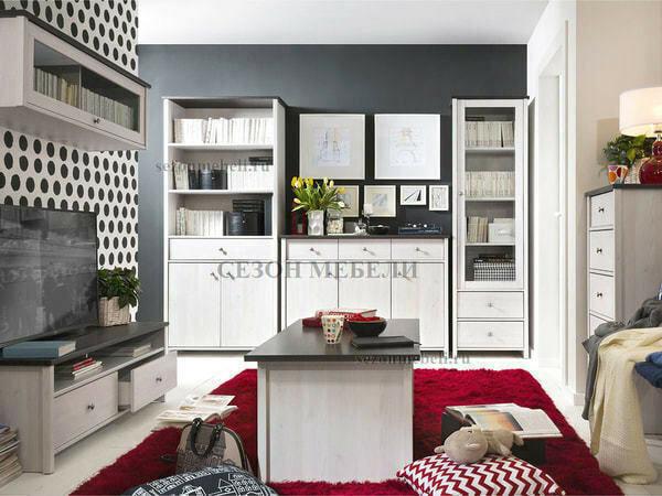 Шкаф комбинированный Порто REG2D1S (фото, вид 2)