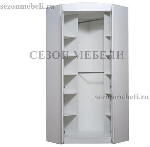 Шкаф угловой Салерно SZFN2D (фото, вид 1)